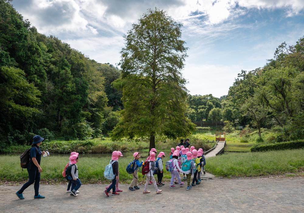 藤沢森林公園を歩くゆうき組