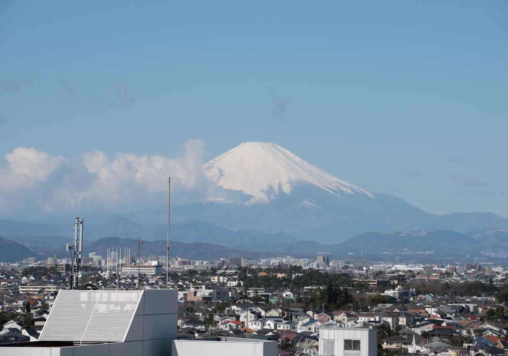 新林公園展望台から臨む富士